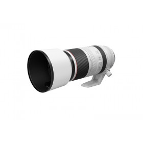Canon RF 100-500mm f / 4.5-7.1L IS USM