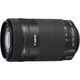 Obiettivo Canon EF-S 55-250mm f/4.0-5.6 IS STM