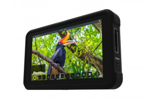 "Atomos Shinobi 5"" Monitor"